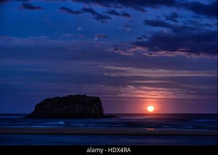 HDX4RA.jpg